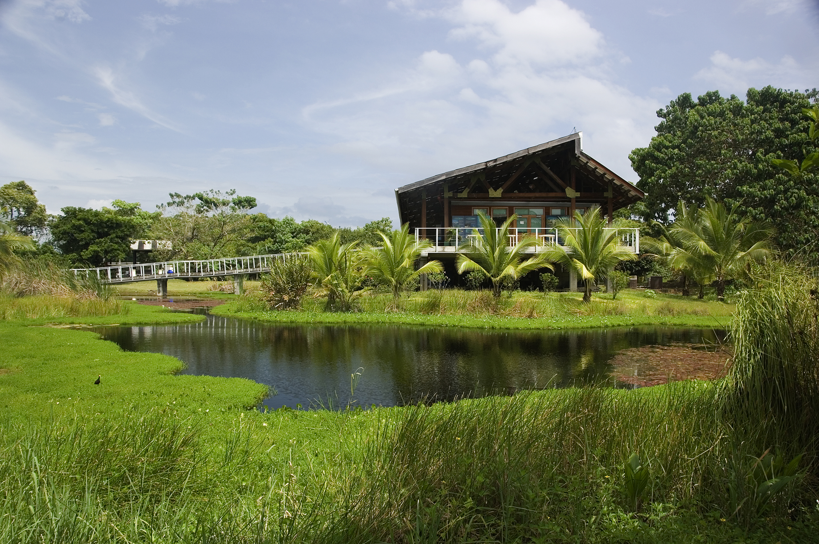 Smithsonian Tropical Research Institute
