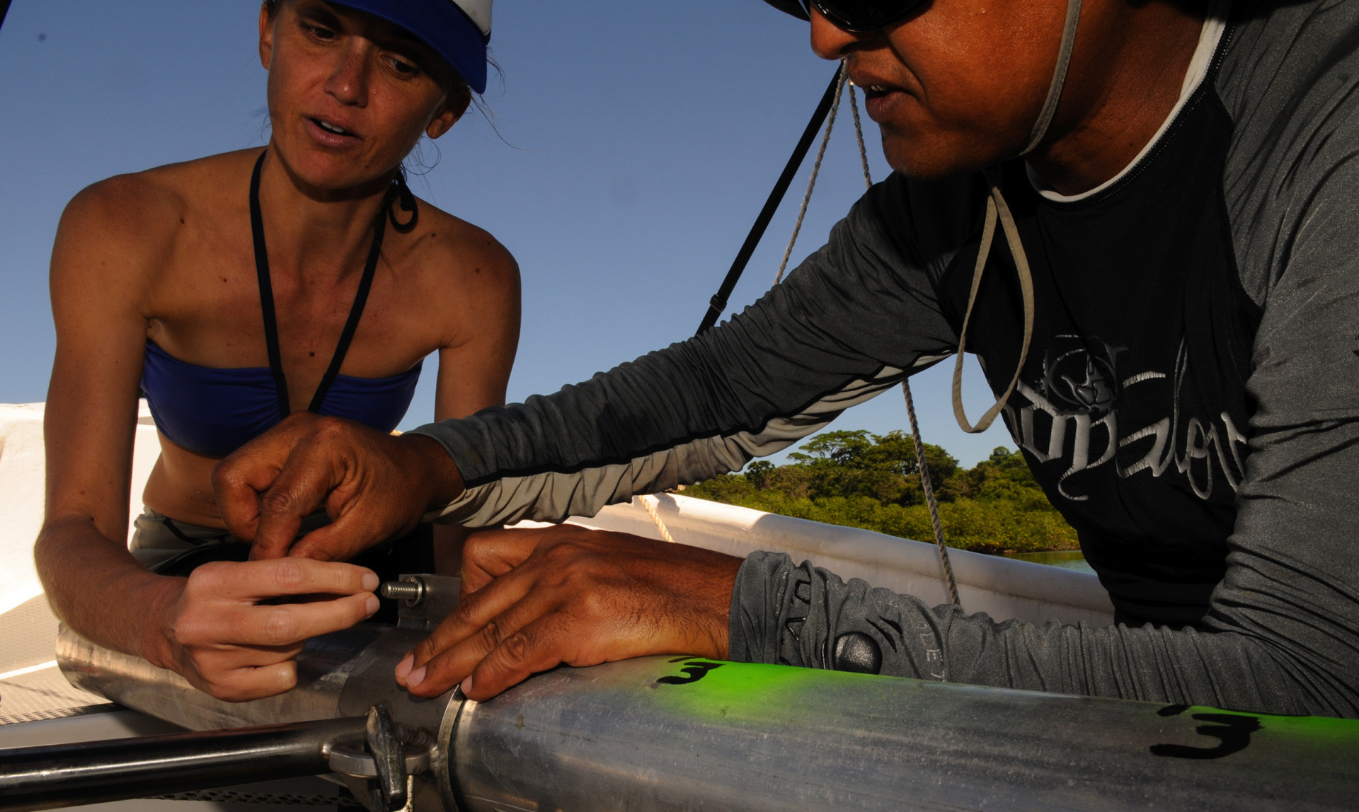 A recent unrelated study by Smithsonian scientists Caitlin Kuempel and Andrew Altieri found that in the absence of Diadema, algae on the reefs in Bocas are held in check by smaller sea urchins