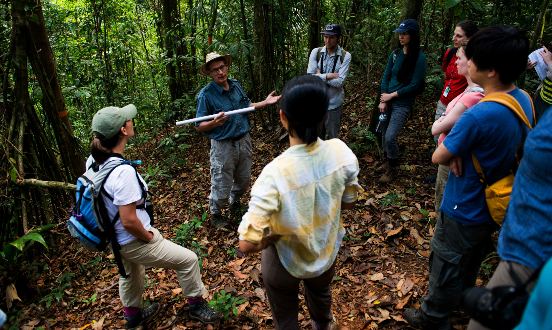 The study was conducted in STRI's Agua Salud project in central Panama, one of the largest landscape-scale studies of secondary forest dynamics in the tropics