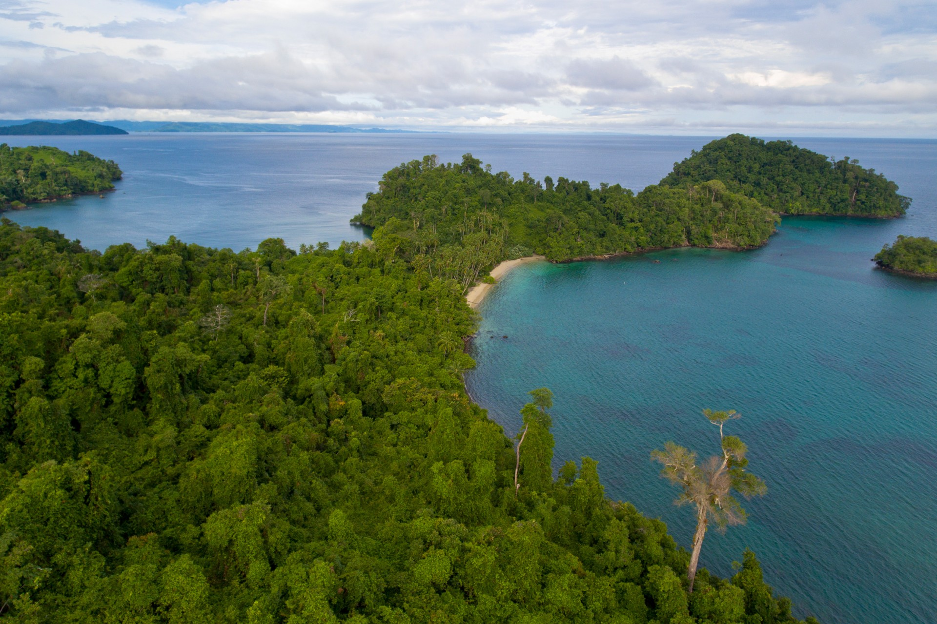 Coiba as a living lab