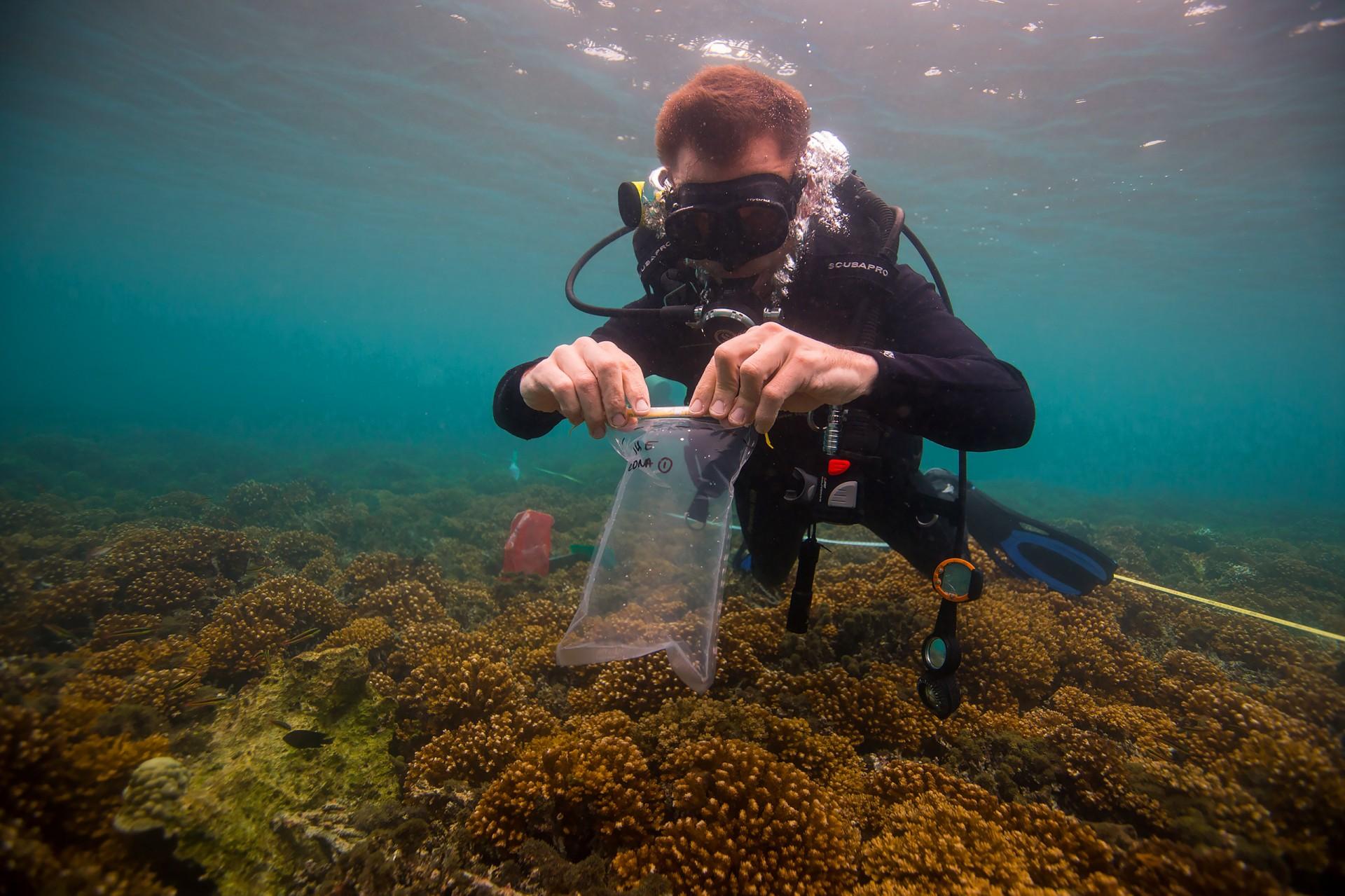 Environmental Surveillance and Microbial diversity