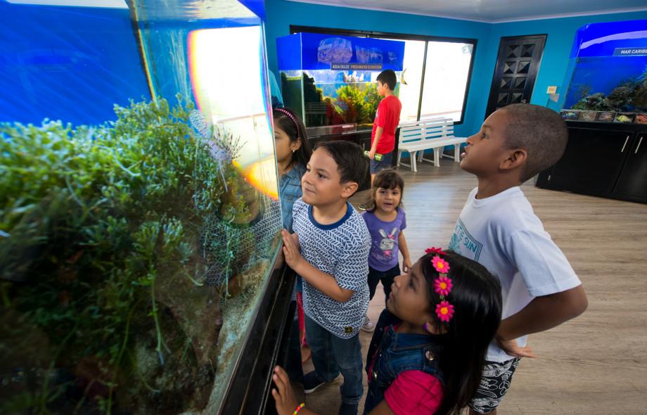 Education and Outreach Punta Culebra