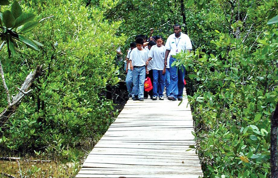 Education and Outreach Punta Galeta