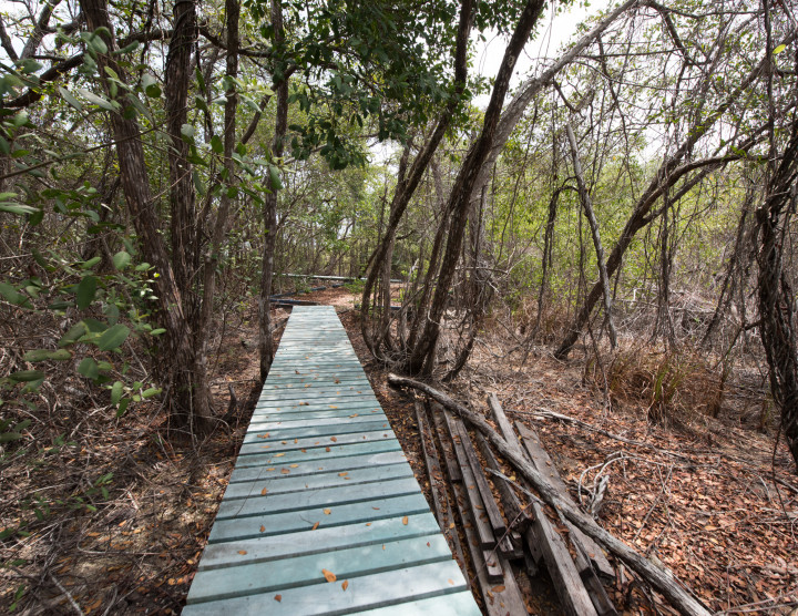Nature trails and Education facilities