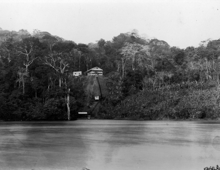 Established in 1923, STRI's first field station stood in a small clearing on Barro Colorado Island