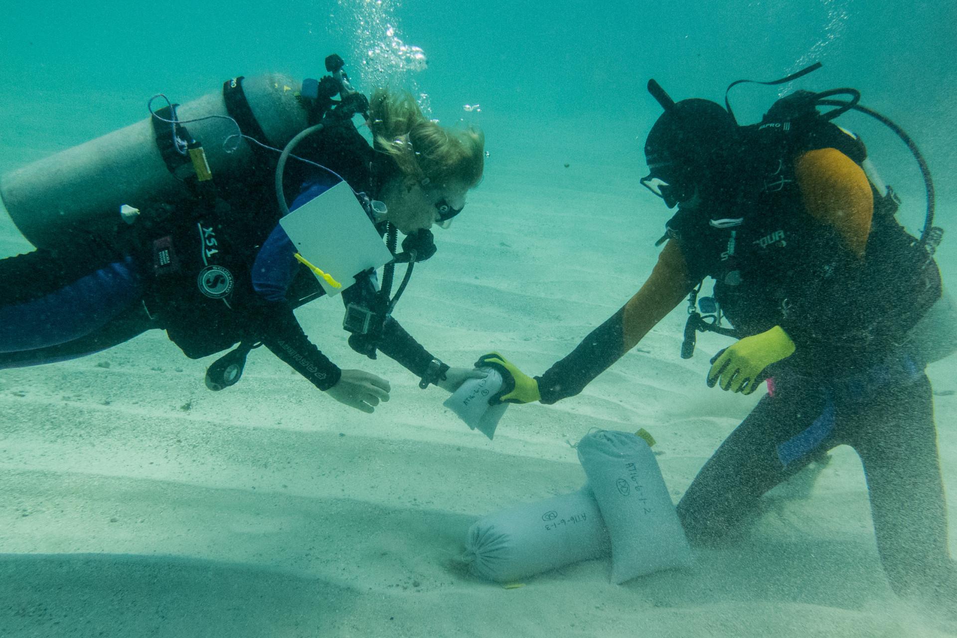 Declining reefs