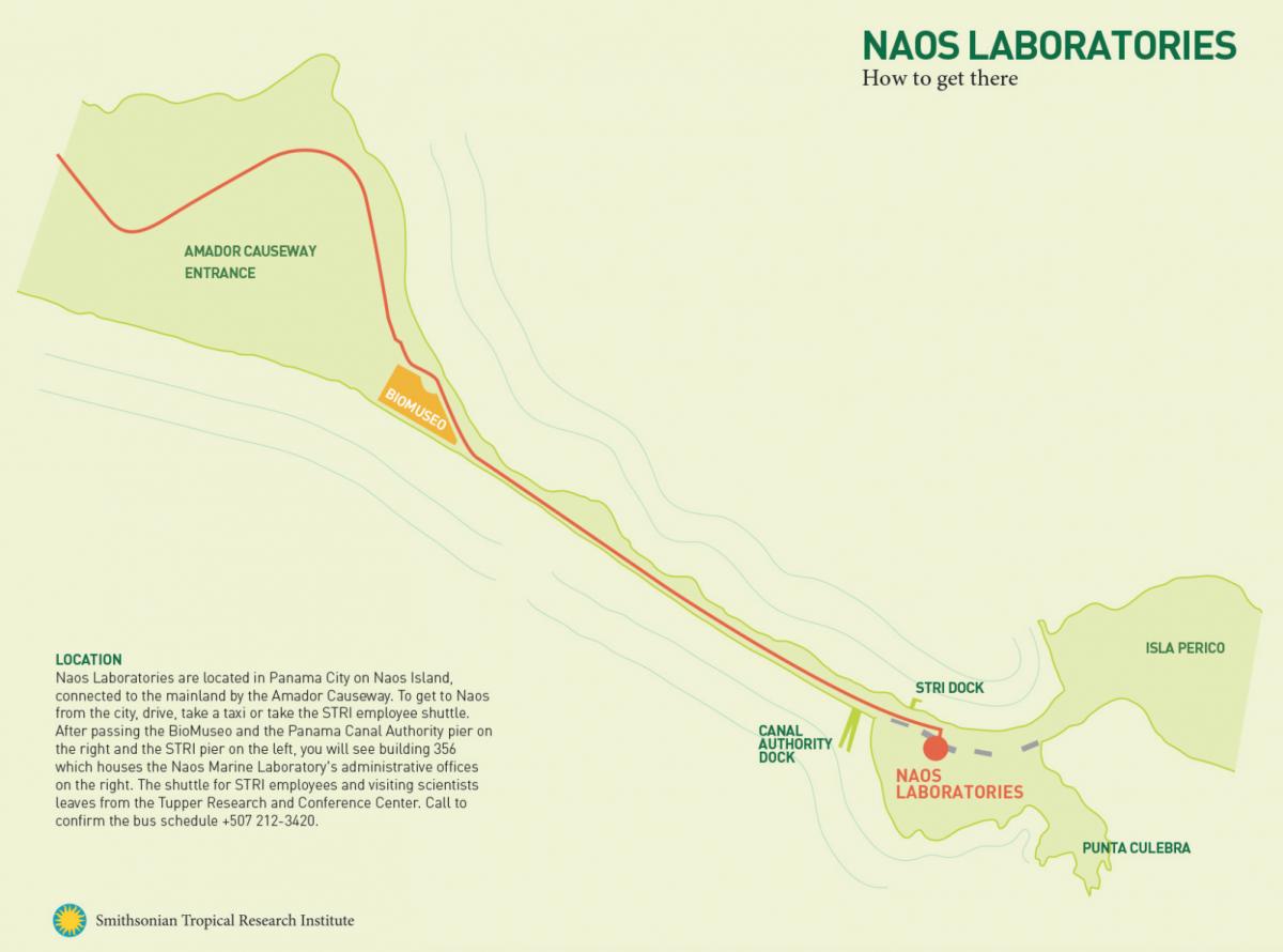 Naos Directional map