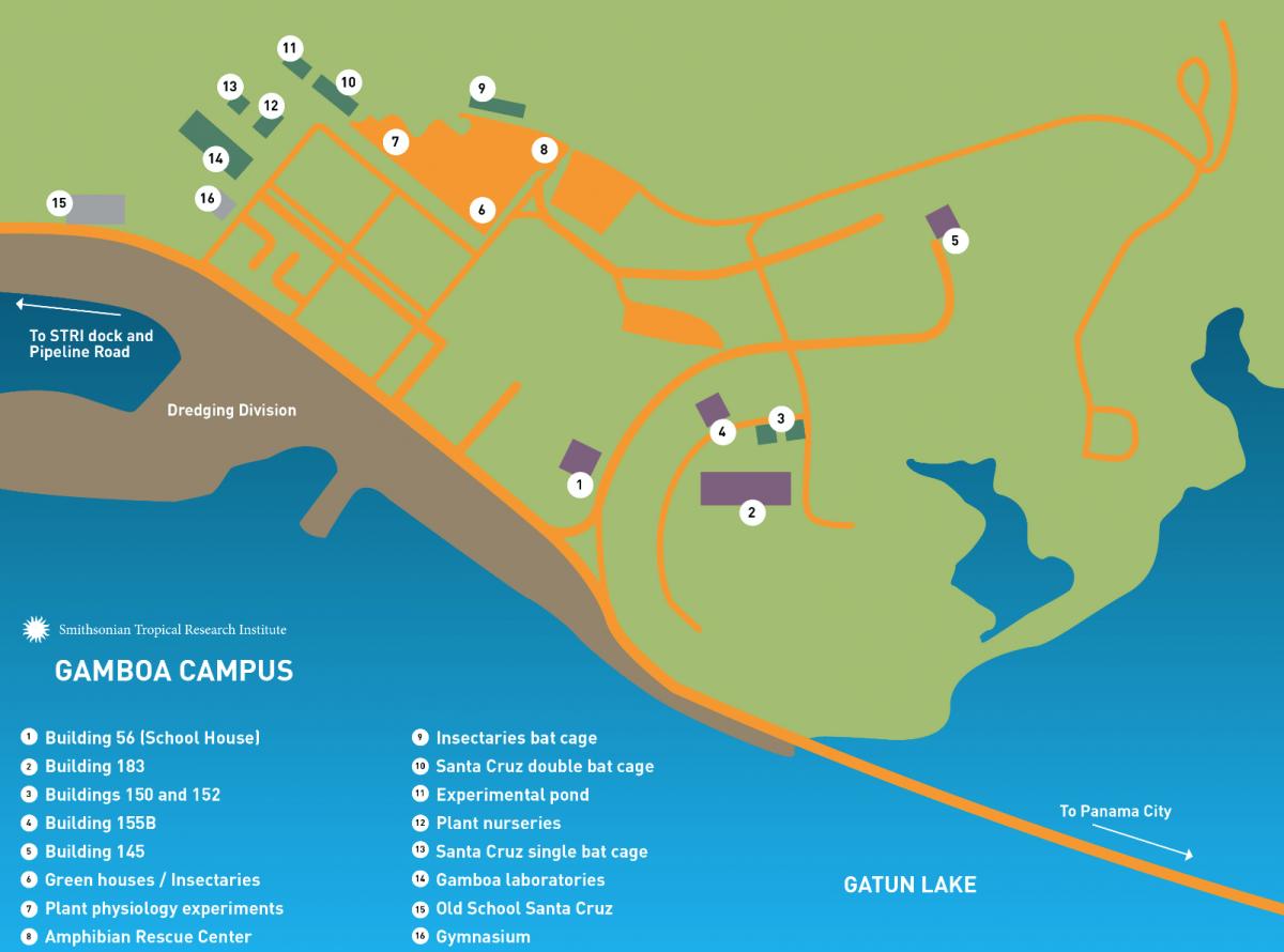 Gamboa map
