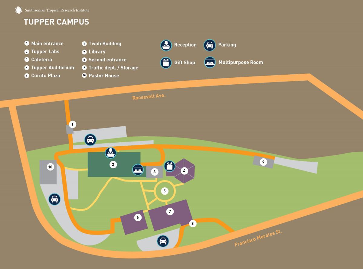 Tupper Center Map