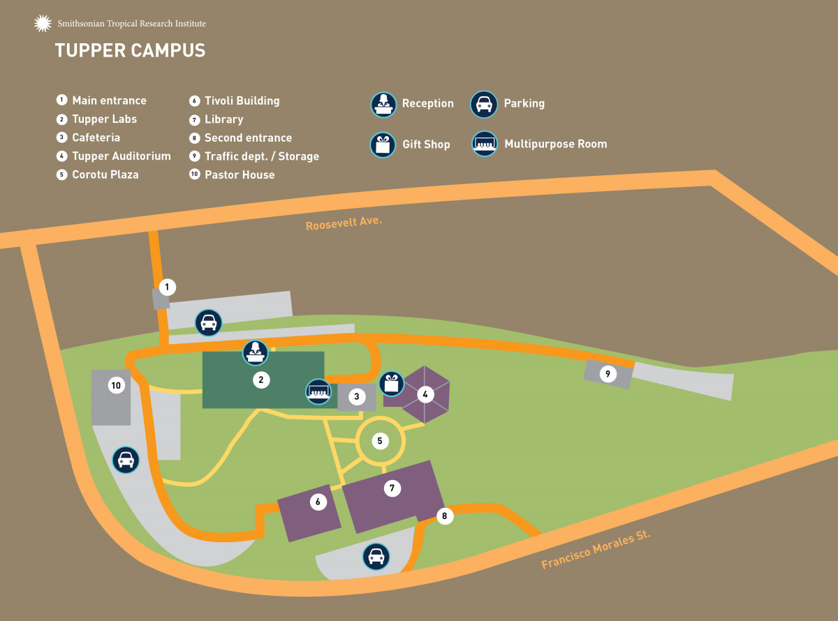 Tupper Center Map