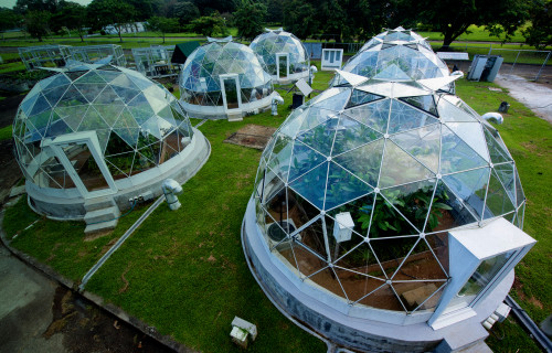 Smithsonian Tropical Research Institute (STRI)