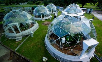 Smithsonian Tropical Research Institute (STRI)
