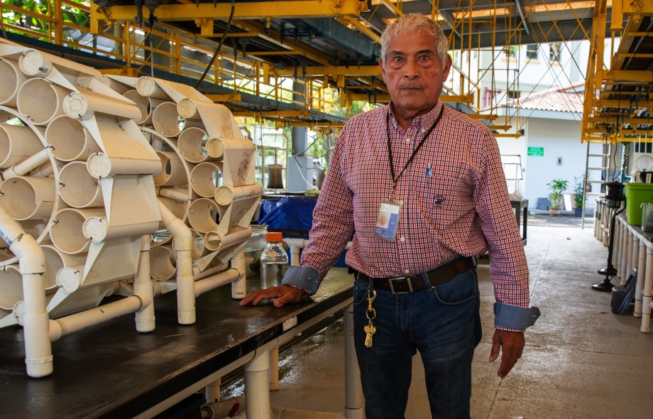 From aquarist to star inventor