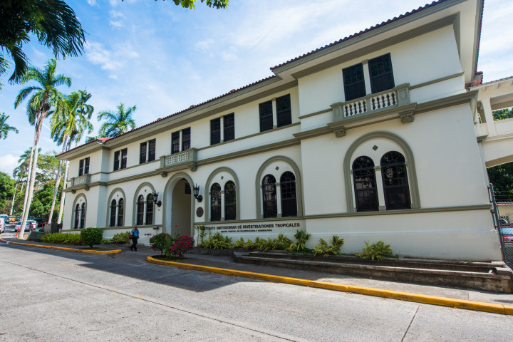 Center for Tropical Paleoecology and Archaeology