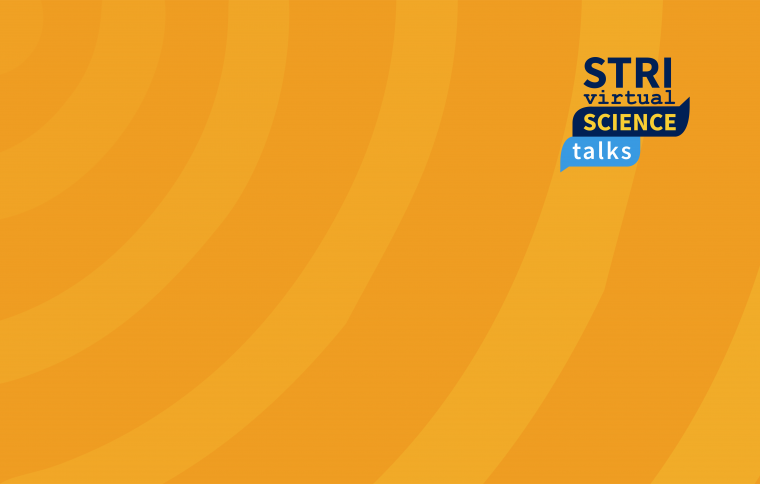 STRI Science Talks