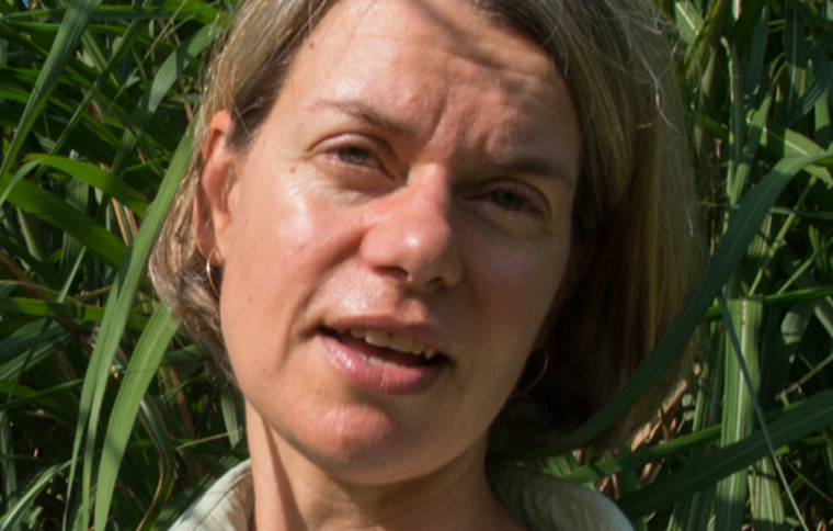Kristin Saltonstall
